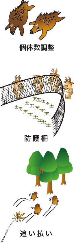 対策の基本 個体数調整、防護柵、追い払い